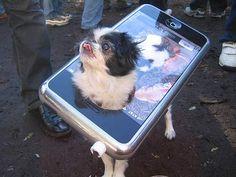 disfraz de iphone para perro