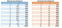 German Shepherd Growth Chart