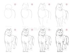 Pencil Drawings, Art Drawings, Husky Drawing, Women Figure, Step By Step Drawing, Wolves, Illustration, Dogs, Artist