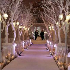 Winter Wonderland Wedding Decorations: I would love to have these trees at my wedding, why cherry blossom wedding why! my-vintage-pink-wedding Wedding Reception Ideas, Wedding Events, Wedding Ceremony, Our Wedding, Themed Weddings, Wedding White, Elegant Wedding, Church Wedding, Indoor Ceremony