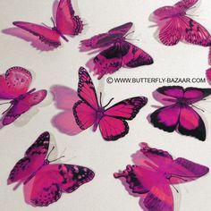 Butterflies HOT PINK. $12.00, via Etsy.