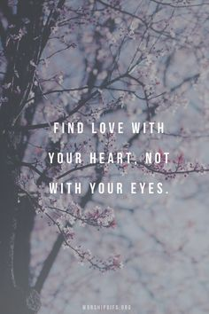 Uploaded by my immortal. Find images and videos about pink, nature and flowers on We Heart It - the app to get lost in what you love. Great Quotes, Quotes To Live By, Love Quotes, Inspirational Quotes, All You Need Is Love, Love Is Sweet, True Love Waits, Pink Nature, General Quotes