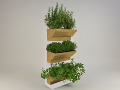 Indoor Herb walls a solution to grow herbs in tidied and spectacular conditions in your kitchen or at your garden. Using fresh and living herbs not only good for healthy and tasty foods but for healthcare and home cosmetics, like facemask or herbal teas. http://goo.gl/YuXwlU Details: white frame cream plant's box 45×60 cm / 17,7×23,6 inches easy to fit water holder system