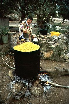 Arab woman cooking chickpeas at West Bank, occupied Jordan (Isreal)