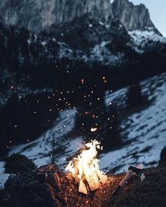 Winter is almost here #firebond #nature #cold #darkness