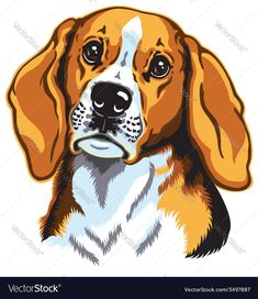 beagle hound, hunting dogs breed. Download a Free Preview or High Quality Adobe Illustrator Ai, EPS, PDF and High Resolution JPEG versions.