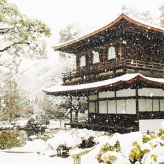 It snowed on my last day in Kyoto! I took the bus over to Ginkakuji to see the beautiful gardens covered with snow. It was so incredibly dreamy! The snowy view from break Kyoto Japan, Tokyo Japan, Yamaguchi, Beauty Around The World, Around The Worlds, Ginkakuji, Japanese Culture, Japan Travel, Where To Go