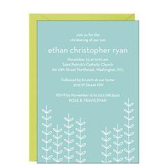 Vines Boy Christening Invitation | Paper Source