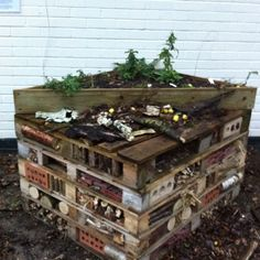 Insect refuge from recycled waste