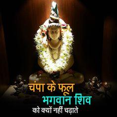 चंपा के फूल भगवान शिव को क्यों नहीं चढ़ाते -http://bit.ly/2oYfZks यह फूल शिव पूजा में सबसे पसंदीदा घटक के रूप में माना जाता था। हालांकि, अब भगवान शिव की पूजा करते समय भक्तों को इन फूलों का उपयोग करने से मना किया जाता है। इस वीडियो में देखिये की क्यों भगवान शिव की पूजा में चंपा के फूल नहीं चढ़ाए जाते | #Artha #Hinduism #Shiva #Narad