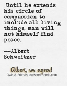 Albert Schweitzer's quote about compassion for animals is right on the money.