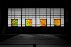 Sakura in Sapporo Dojo, Japanese Restaurant Design, In Praise Of Shadows, Japan Landscape, Japan Garden, Geisha, Japanese Interior, Japan Design, Japan Photo