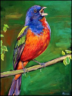 Painted Bunting songbird painting on canvas by Johnathan Harris.
