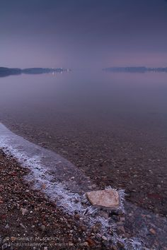 The Danube river in Vidin, Bulgaria Sky Resort, Wild Forest, Danube River, Cities In Europe, Eastern Europe, Bulgaria, Beautiful Places, National Parks, Scenery