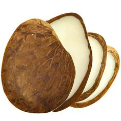 Tagua Nut Slices Produced in Ecuador | Fair Trade | Jewelry & Ornament Materials #NayaNayon