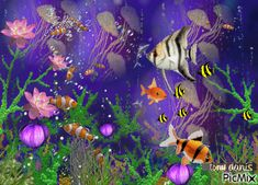 fishes,underwater,natural,original backgrounds, painting,digital art by tonydanis