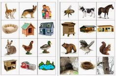 Els animals i els seus habitatges Preschool At Home, Free Preschool, Preschool Worksheets, Preschool Activities, Animal Crafts For Kids, Animal Projects, Animals For Kids, Art For Kids, Montessori Science