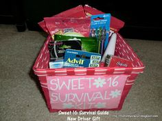 Birthday Gift Ideas ... Another version of Sweet 16 Survival Guide (New Driver Kit)