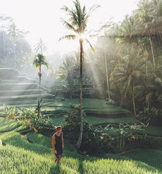 @doyoutravel exploring the rice fields in Bali / Photo via @discoverearth