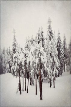 winter . . . breathtaking!