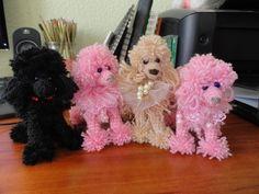 Adorable yarn poodle .