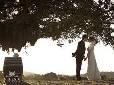 Anna and Roberto, via Shine Studios Wedding Venues, Wedding Photos, Waiheke Island, Island Weddings, How To Memorize Things, Romance, Wedding Photography, Park, Photo Ideas