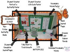Butterfly Study: science table includes non-fiction books class science journa Science Center Preschool, Middle School Science, Science Experiments Kids, Science Lessons, Science Education, Science Table, Science Centers, Kid Science, Science Chemistry