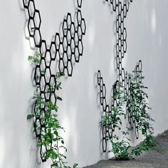 A contemporary garden trellis made from metal for cool walls. An exclusive European designed art piece for the contemporary outdoor space. Sublime and unique. Australia.