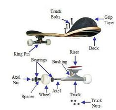 Skateboard trucks are the metal T-shaped pieces that mount onto the underside of. - Skateboard trucks are the metal T-shaped pieces that mount onto the underside of the skateboard and - Beginner Skateboard, Skateboard Deck Art, Skateboard Parts, Skateboard Wheels, Skateboard Design, Skateboard Girl, Build Your Own Skateboard, Penny Skateboard, Longboard Design