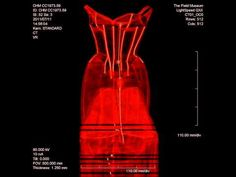 To understand the Tree, the CHM took the dress to the Field Museum of Natural History and performed a CT scan, using equipment normally used to examine ancient mummies. Here, it reveals the complex skeleton of a dress, rather than its wearer. #CharlesJames #museum #exhibition #fashion #history #couture #FieldMuseum #CTscan