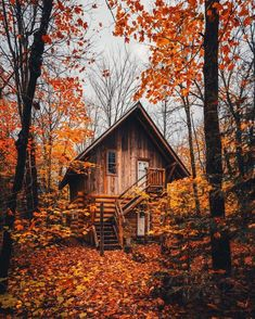 Treehouse Living, Treehouse Cabins, Treehouses, Log Cabins, Tiny Cabins, Lost In The Woods, Cabin In The Woods, Tree House Plans, Little Cabin