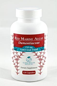 Red Marine Algae, Dumontiaceae