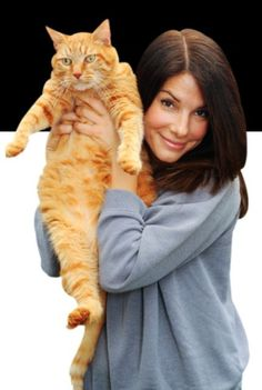 #CelebCats#FamousCats|Sandra Bullock Holding up her large ginger kitty