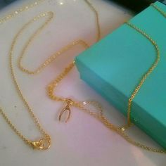 Wishbone Thin Body Chain Necklace in Gold