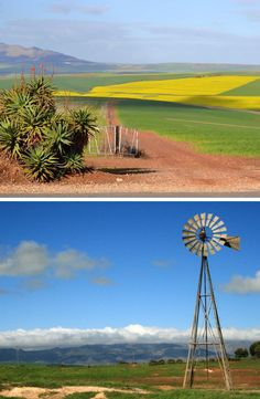 Platteland-skoonheid op sy beste... #westerncape #southafricannature #countryside Wind Turbine, Countryside, Westerns, Places, Nature, Naturaleza, Nature Illustration, Off Grid, Lugares