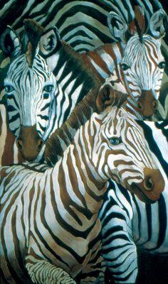 Zebra's Mischief