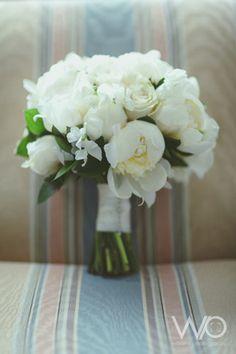 Williams Photography   Sarah Jono Web   All Seasonal Flowers, December, Seasons, Table Decorations, Bouquets, Photography, Home Decor, Photograph, Decoration Home