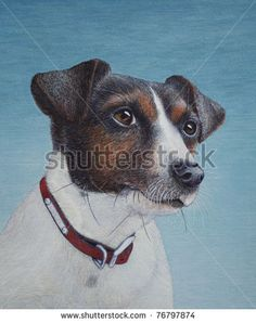 Egg tempera painting of a Jack Russell terrier - stock photo