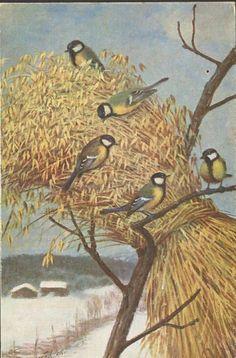 Julekort Anders Kongsrud. Julenek. Utg Mittet Christmas Postcards, Christmas Cards, Country Art, Winter Solstice, Norway, Magic, Painting, Velvet, Christmas E Cards