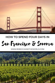 Are you planning the perfect Sonoma and San Francisco itinerary? Check out this four-day itinerary which hits the highlights of San Francisco and Sonoma. From where to eat to what to see and which wineries to try, you'll have a wonderful weekend. San Diego, San Francisco, Travel Advice, Travel Guides, Travel Tips, Travel Hacks, Pacific Coast Highway, Canada Travel, Travel Usa