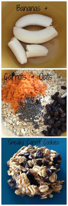 Sneaky Carrot Cookies!  Perfect for picky eaters and a even a good option for breakfast!    SquashBlossomBabies