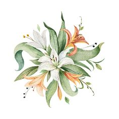Watercolor vector arrangement of Lily flowers and green leaves. illustration for cards, wedding invitation,save the date or greeting design. Summer flowers with space for your text. Wreath Watercolor, Watercolor Cards, Abstract Watercolor, Watercolor Flowers, Lilies Drawing, Floral Banners, Arte Floral, Free Vector Art, Lily