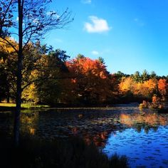 #WonderWatch 2015-122 Say Ahhhhhhh #UpperDelawareRiverRegion #PikeCountyPA #PoconoMtns #TakeONPocono #wow #Peaceful #fall #FallFoliage #beauty #GlimpsesOfFall #HeartGround #lake #leaves #MarvelsOfNature #nature #oh #October #SandyLongPhotos #PeakFoliage #ahh