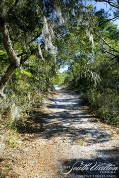 The beach isn't the only spot in South Walton to take in beautiful views during your run. Get your fitness on through the trails of Topsail Hill Preserve State Park in Dune Allen!