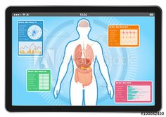 medical interface on tablet PC, human body and digestive organs, vector illustration