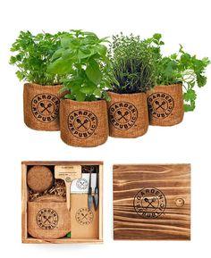 herb m. Barong Tagalog, Growing Herbs Indoors, Grow Kit, Herb Seeds, Potting Soil, Window Sill, Herb Garden, Starter Kit, Outdoor Gardens