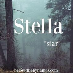 Beloved Baby Names: Names of the Week: Stella and Tucker