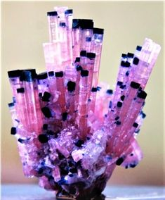 Pink blue cap tourmaline bunch Wow this is rare! Minerals And Gemstones, Rocks And Minerals, Rock Collection, Beautiful Rocks, Mineral Stone, Stones And Crystals, Gem Stones, Rocks And Gems, Healing Stones