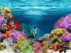 Use on aquarium Glass Fish Tanks, Aquarium Fish Tank, Underwater Painting, Underwater World, Aquarium Backgrounds, Wallpaper Backgrounds, Beautiful Tropical Fish, Under The Ocean, 3d Wall Murals