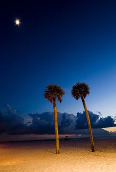 Go to Clearwater for the Baseball and Beaches- Vacation rentals in Clearwater are a great opportunity for sports fans to enjoy the baseball and get some sun.     #baseball   #beaches   #Clearwater